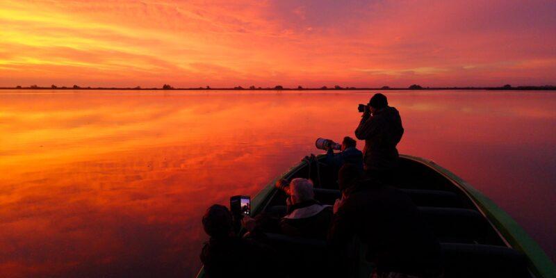 Fotografie de natură în Delta Dunării