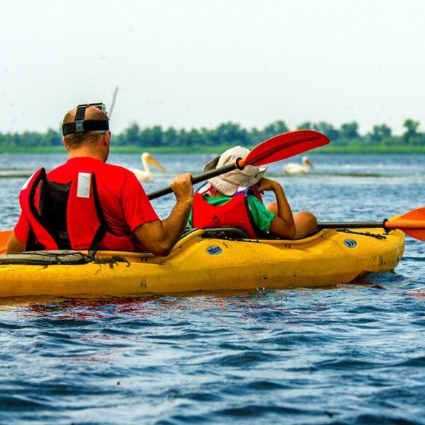 Ture cu caiacul în Delta Dunării