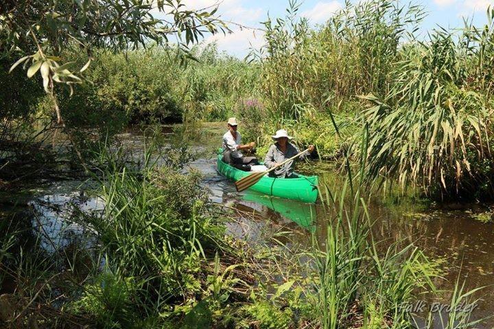 Ture cu canoe în Delta Dunării