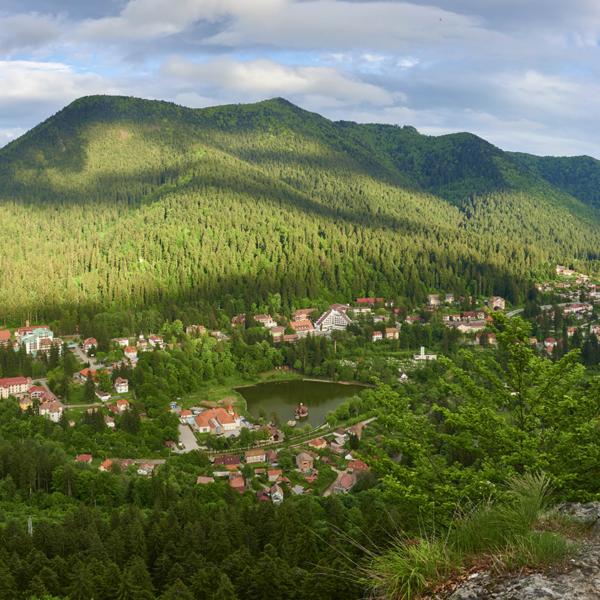Ziua Rezervației Naturale Mlaștina Borșaroș
