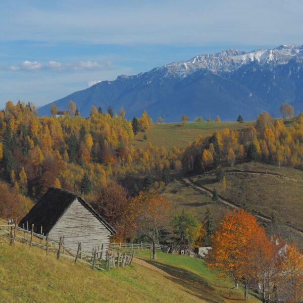 Drumeție în Parcul Natural Bucegi și Parcul Național Piatra Craiului