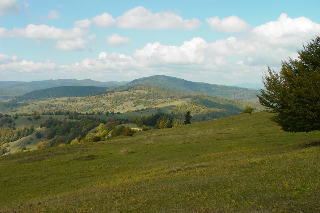 Munții și pădurile Neamțului