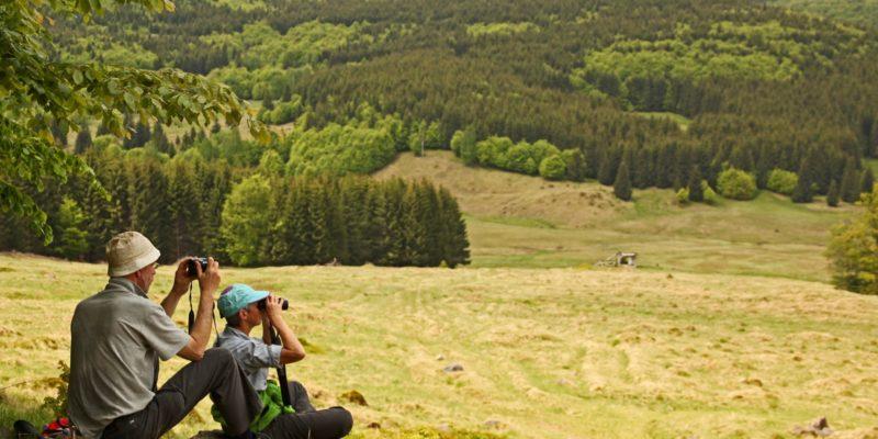 Eco Maramureș: 10 experiențe ecoturistice în inima verde a Maramureșului istoric