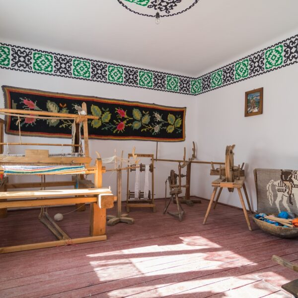 Muzeul Etnografic Ciocănești, Țara Dornelor