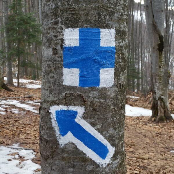 cruce albastră, marcaj turistic