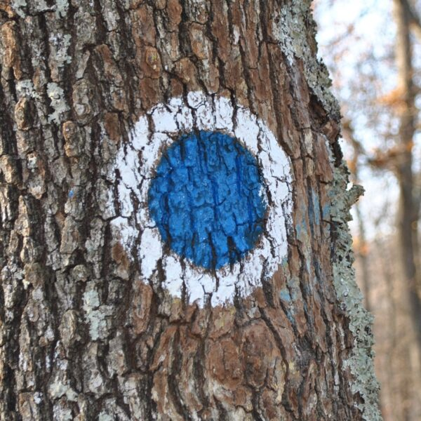 punct albastru, marcaj turistic