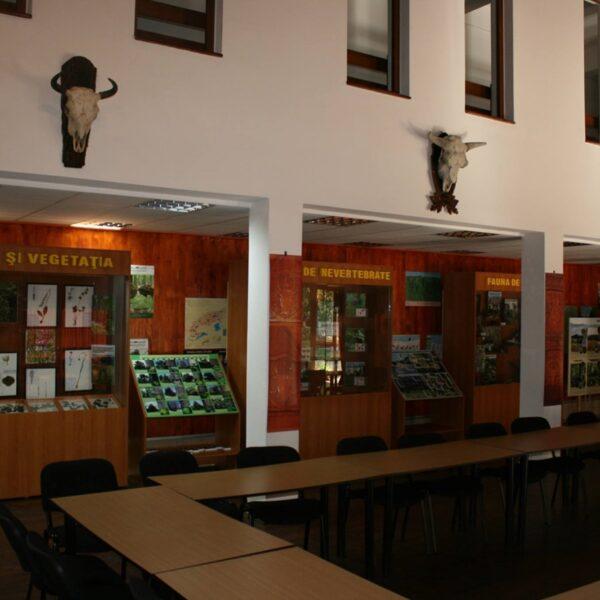 Centrul de vizitare al Parcului Vânători Neamț și zimbrii în semi-libertate