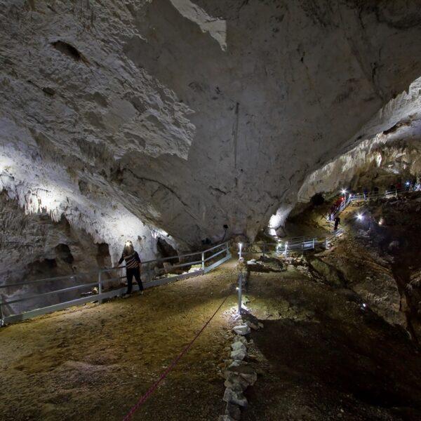Peștera Meziad, Pădurea Craiului
