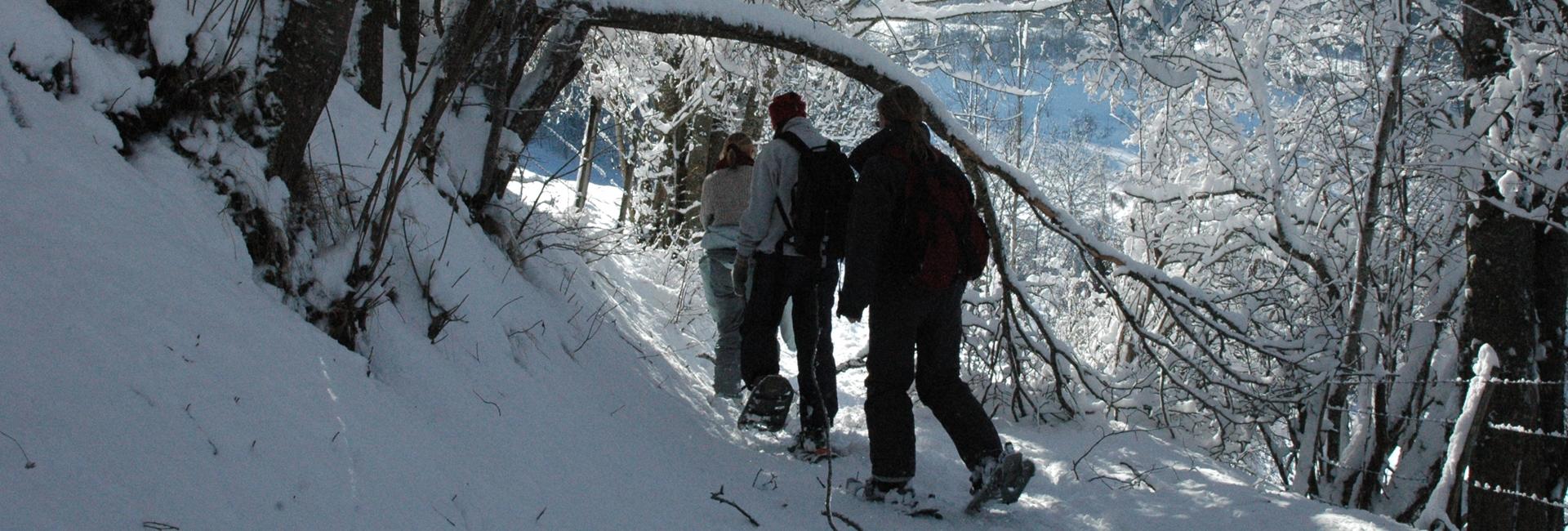 Drumeție cu rachetele de zăpadă prin Carpați