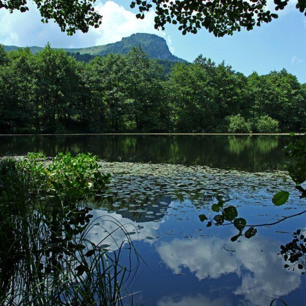 Lacul Morărenilor