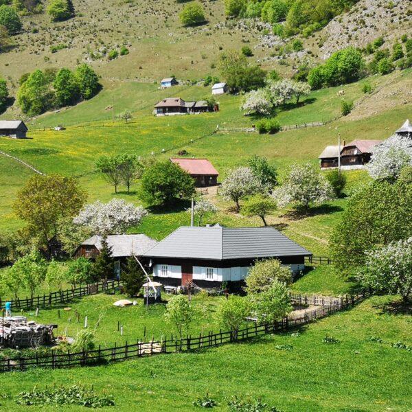 Gospodării tradiționale în Șirnea