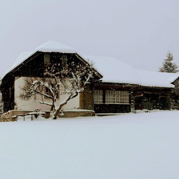 casa traditionala_Fundata02